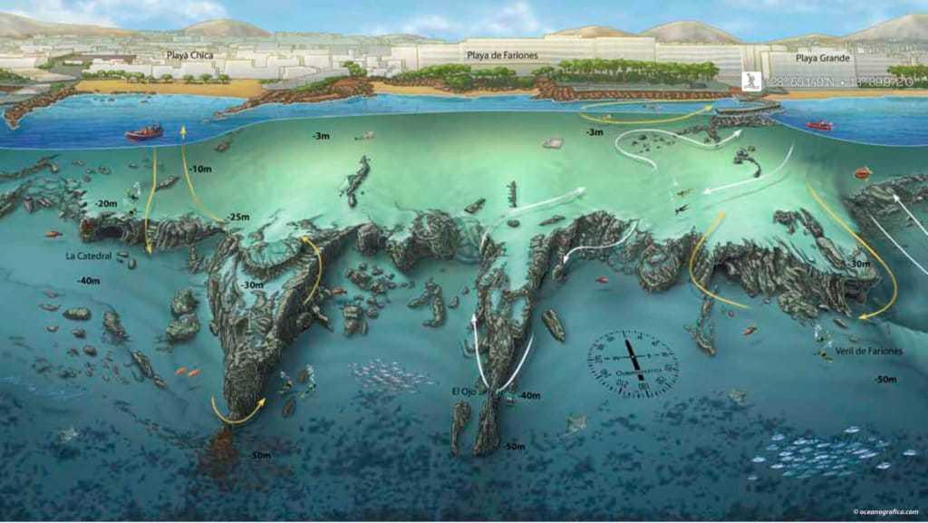 inmersiones veril de fariones Lanzarote Buceo