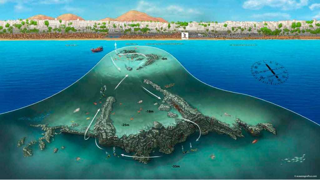 inmersiones waikiki Lanzarote Buceo